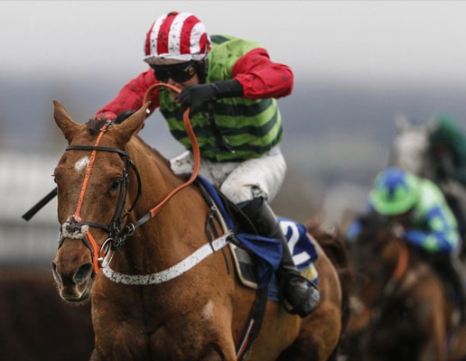 Cheltenham Races Haresfield beacon package